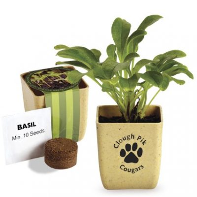 Flower Pot Set w/Basil Seeds
