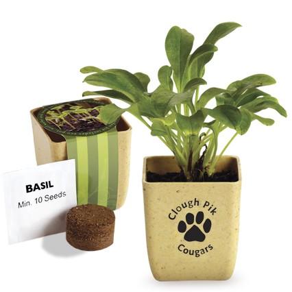 Flower Pot Set w/Basil Seeds
