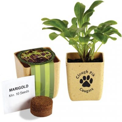 Flower Pot Set w/Marigold Seeds