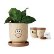 Goofy Group™ Grow Pot Eco Planter w/Basil Seeds